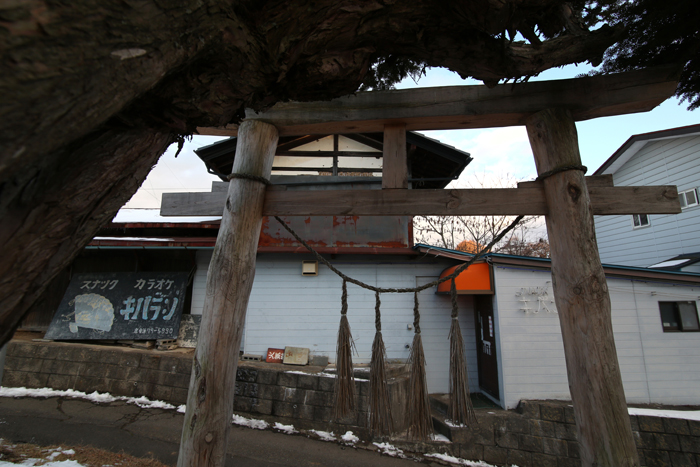 【Nagano Snapshot】 原村1 混沌こそ我が墓碑銘_c0035245_324489.jpg