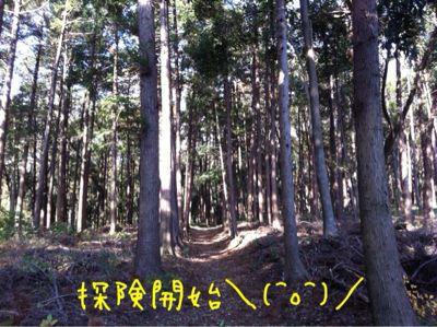 b0098660_19114877.jpg
