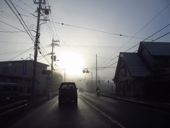 日本は寒いです_b0100062_9503975.jpg