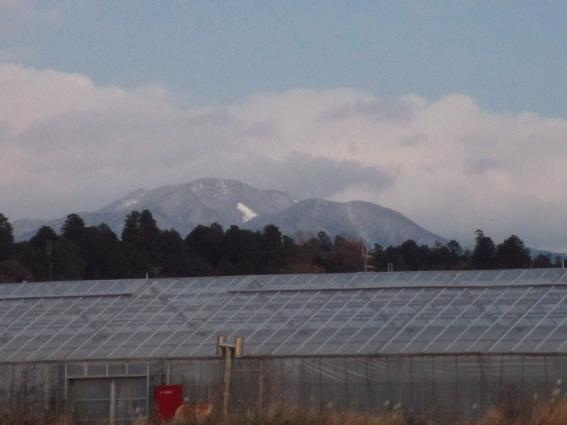 日本は寒いです_b0100062_9521754.jpg