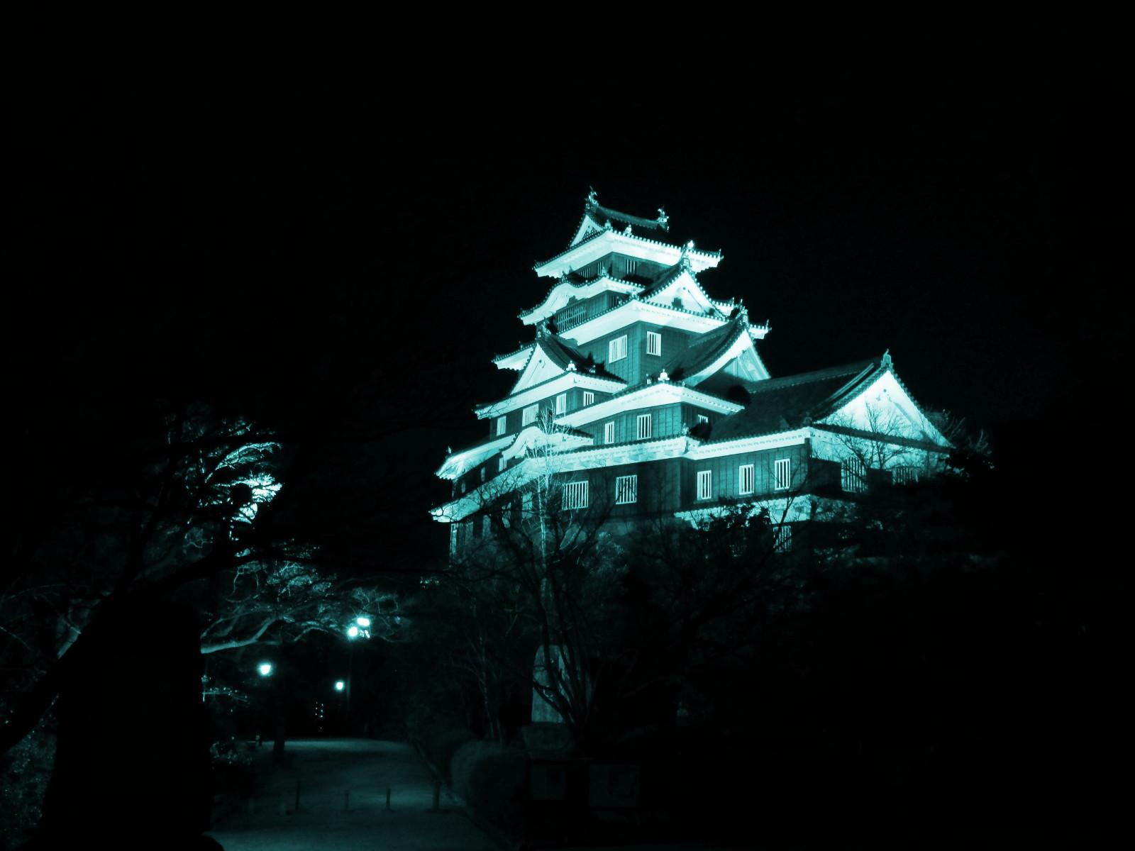 烏城または金烏城とも呼ばれる岡山城の天守閣のライトアップ、見てきました。_c0027285_1681984.jpg