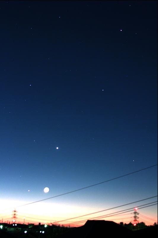 電線ハギマシコ/水星・月が大接近/氷点下5度_b0024798_12451265.jpg