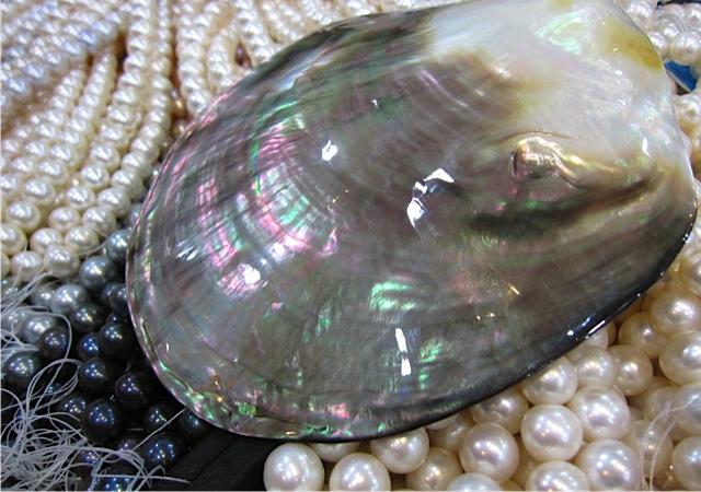 The Pearl_f0197215_10433083.jpg