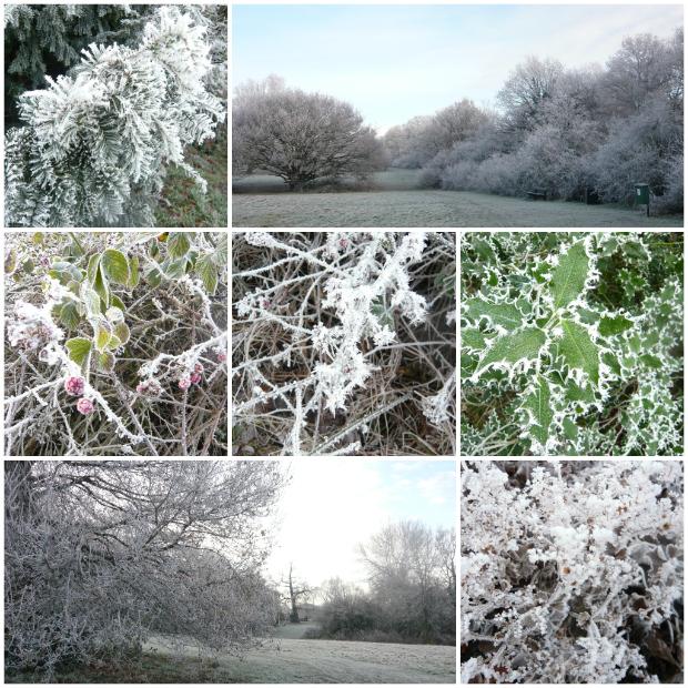 今年一番寒い日の芸術作品☆_a0266142_19413688.jpg