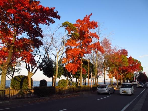 秋色のびわ湖_b0100062_2381938.jpg