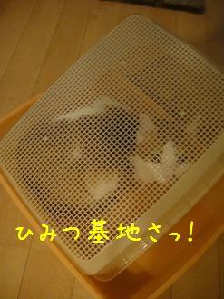 c0140863_18424973.jpg
