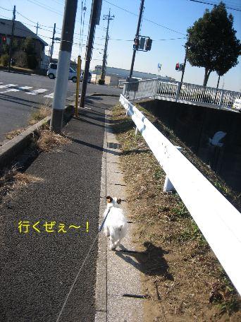c0179472_16513249.jpg