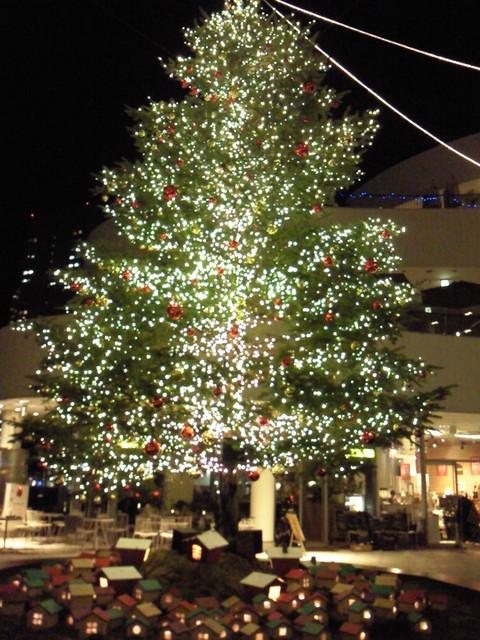 横浜のクリスマス_e0237625_2211104.jpg