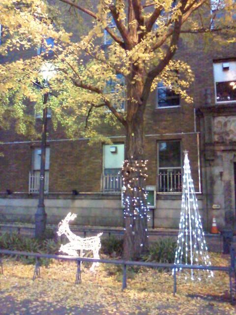 横浜のクリスマス_e0237625_22115749.jpg