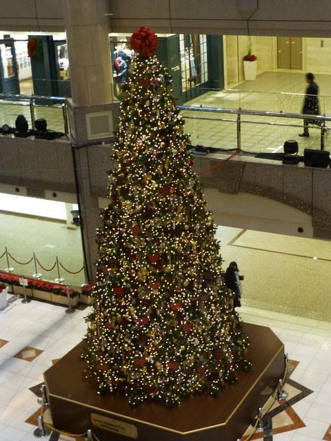 横浜のクリスマス_e0237625_2291279.jpg
