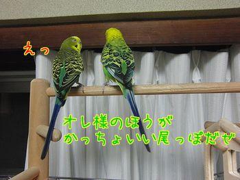 f0196665_22412047.jpg