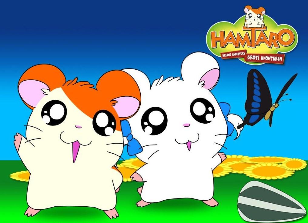 ちょうちょとハム太郎とりぼんちゃんです。
