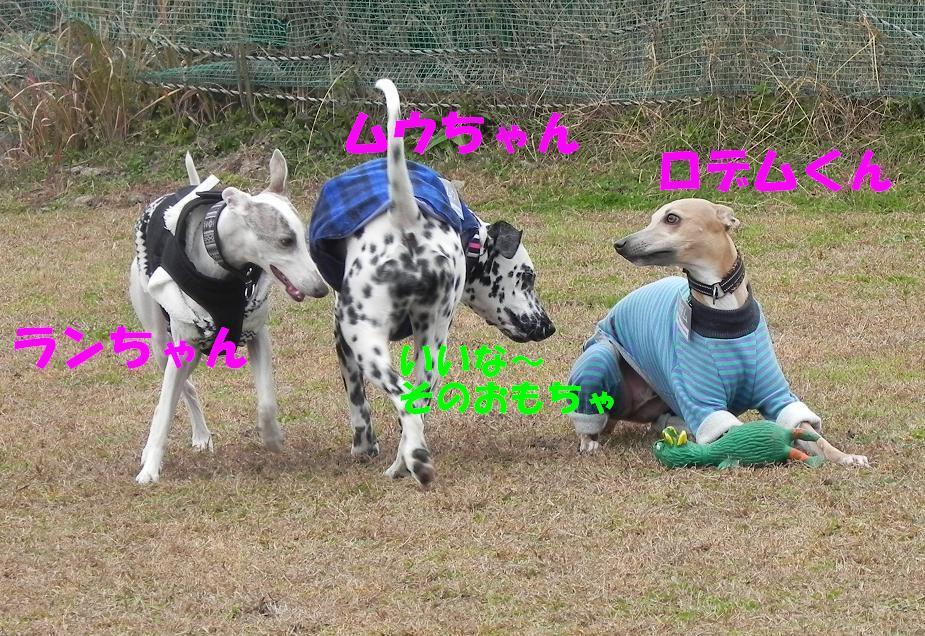 b0118209_20161344.jpg
