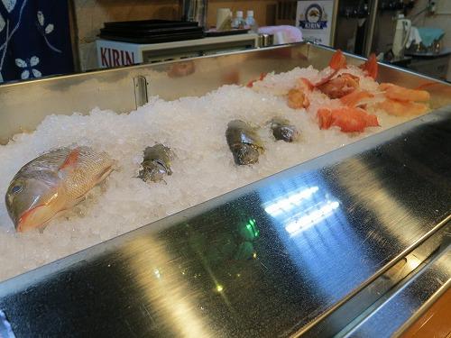 にぶ家で美味しい魚いただきま~す_a0055835_1743215.jpg