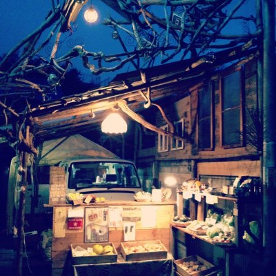 anowa のお野菜のこと_a0251749_15432530.jpg