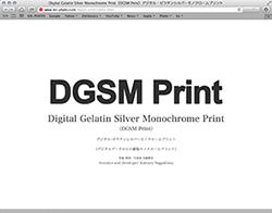 Canon PIXUS Pro-1用のDGSM Print専用ICCプロファイルのダウンロードを開始致しました。 _b0194208_145880.jpg