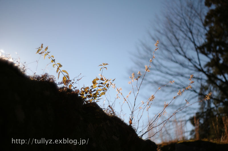 d0108132_201119100.jpg