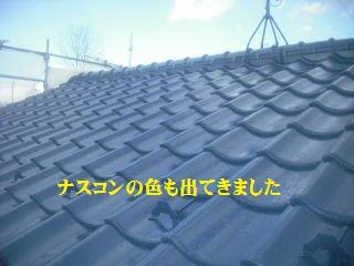 f0031037_1957724.jpg