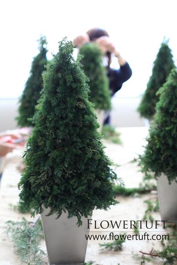 フローラルクリスマスツリーレッスン♪_c0137872_11144143.jpg