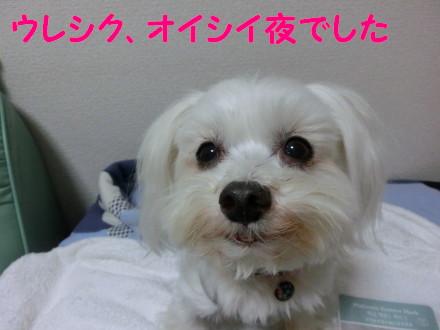 b0193480_16385137.jpg