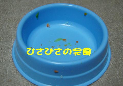 f0195891_21136100.jpg