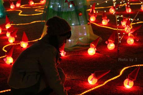 * クリスマスフォト会 *_c0083904_11451124.jpg