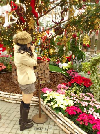 * クリスマスフォト会 *_c0083904_1148775.jpg