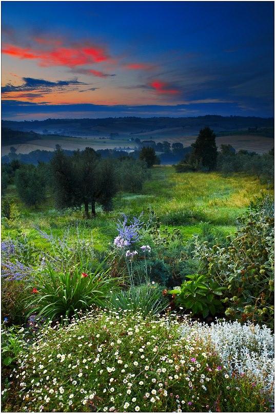 植物・庭の世界 32_f0213189_91883.jpg
