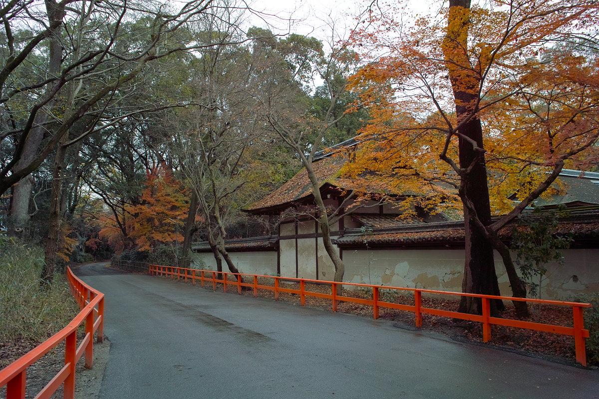 河合神社_f0021869_018123.jpg