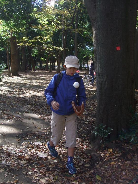 オークリーフ(毛利庭園)_f0049672_16235273.jpg