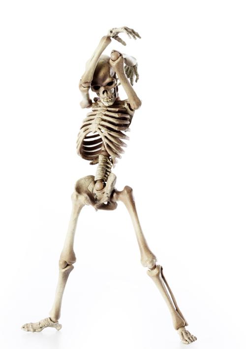 骸骨の偏愛_a0165018_2104750.jpg