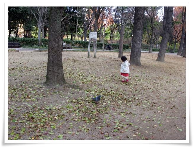 靭公園_f0129726_2245394.jpg