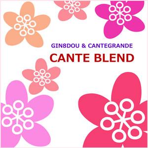 2013-1/CANTE BLEND_b0195242_1312238.jpg