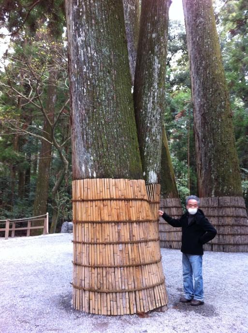 参道の鉾杉の巨木にも挨拶を_b0096957_17455626.jpg