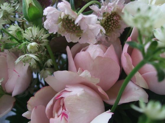 オークリーフ(バラの花束)_f0049672_1762491.jpg