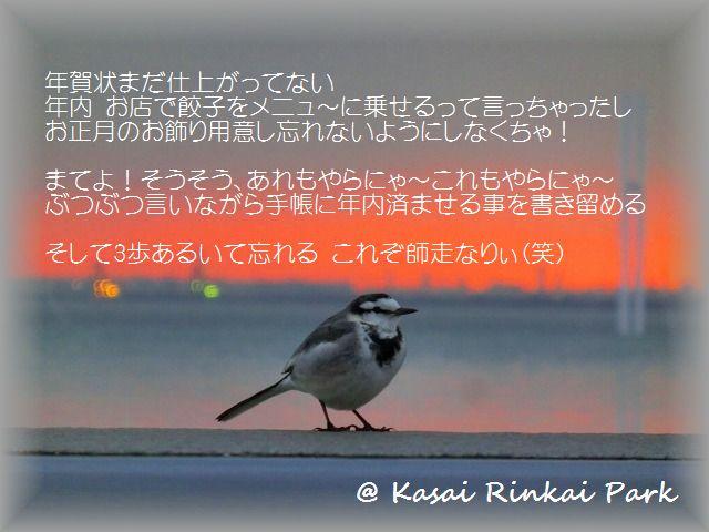 b0190603_14484443.jpg