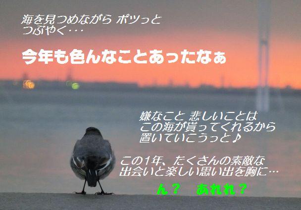 b0190603_144941.jpg
