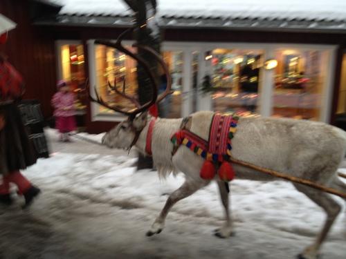クリスマスマーケット Bærum Julemarked _a0229904_6274076.jpg