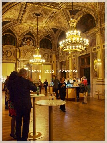 ウィーンオペラ座でオペラ鑑賞_f0229410_1391543.jpg