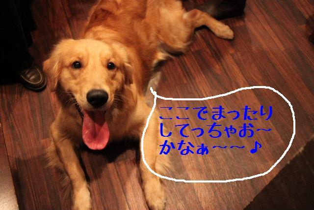 b0130018_0532389.jpg