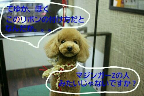 b0130018_22495836.jpg