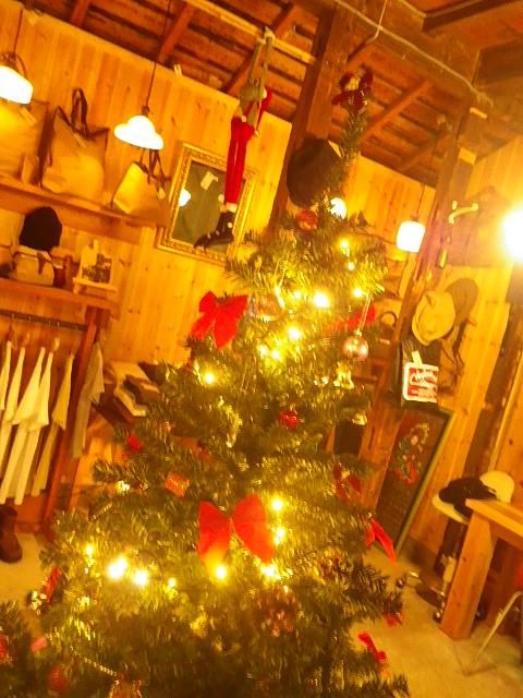 ☆ミルのクリスマス忘年会☆_b0207642_15274231.jpg