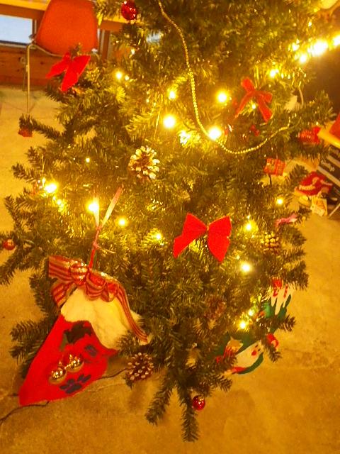 ☆ミルのクリスマス忘年会☆_b0207642_15281523.jpg