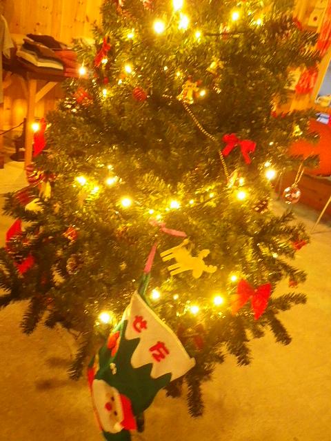 ☆ミルのクリスマス忘年会☆_b0207642_15284732.jpg