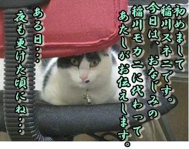 b0151748_127228.jpg