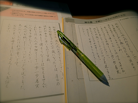 ヤーヤー、年末ダッシュ☆_e0071652_13264192.jpg