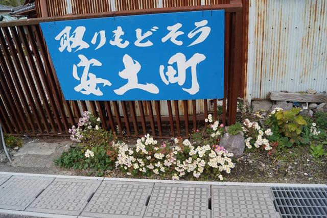 日本一の紅葉 教林坊、聖徳太子と教林坊、織田信長の魅力、お勧めしたい京都の紅葉、驚愕の安土教林坊①_d0181492_189252.jpg
