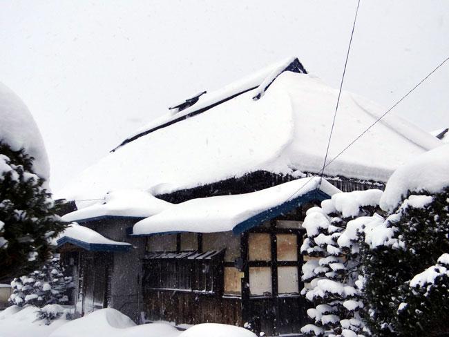 昨日の雪景色_a0136293_165501.jpg