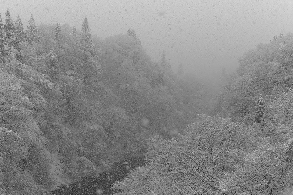 雪は白いものだから #LEICA M Monochrom_c0065410_20592580.jpg
