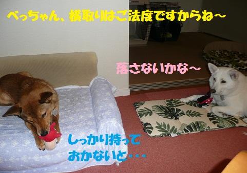 f0121712_1501110.jpg